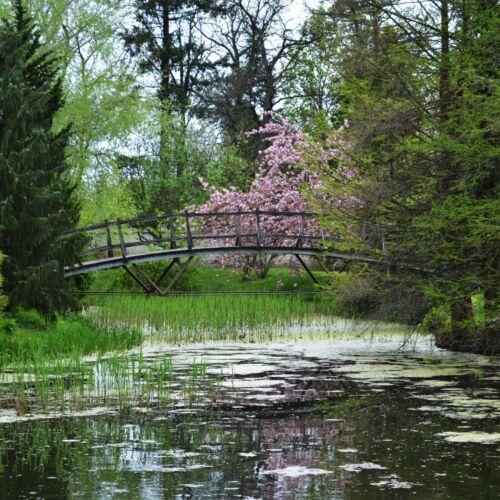 Eszterházy Károly Egyetem Erdőtelki Arborétum | Erdőtelek