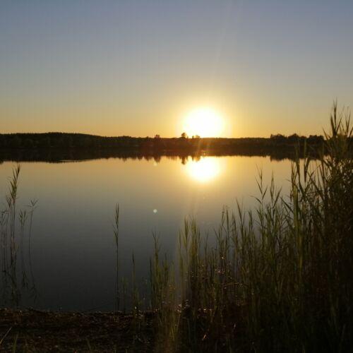 Tetsuo-tó   Lébény