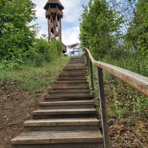Fekete-hegyi kilátó | Mikóháza