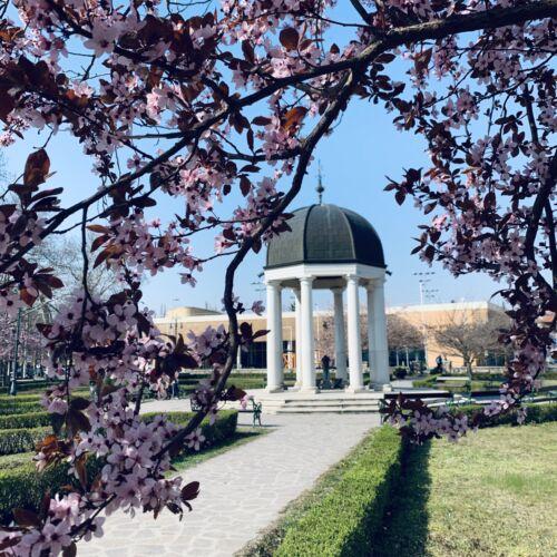 Szent József park | Eger