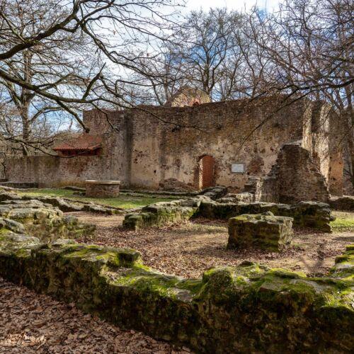 Pálos kolostor romjai | Salföld