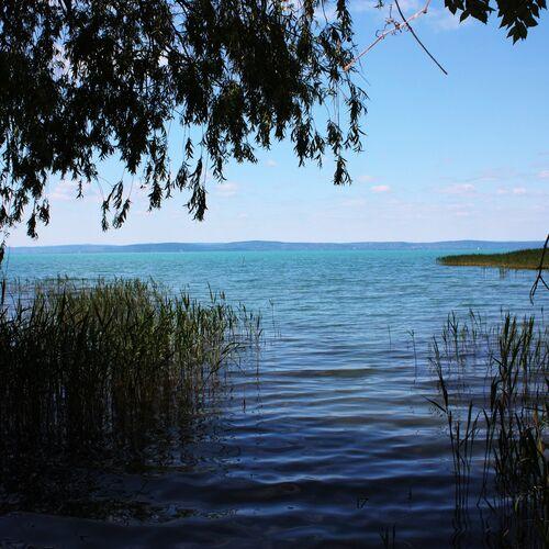 Balatonaligai szabadstrand | Balatonvilágos