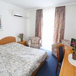 Comfort Standard Double Room (extra bed available)