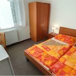 Mountain View Ground Floor 1-Room Apartment for 2 Persons (extra bed available)