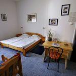 Camera tripla cu grup sanitar cu vedere spre gradina (se poate solicita pat suplimentar)
