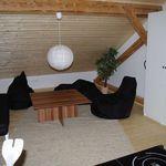 Family Suita pro 5 os. se 2 ložnicemi v podkroví (s možností přistýlky)