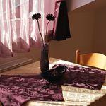 Studio Superior 1-Zimmer-Apartment für 2 Personen (Zusatzbett möglich)