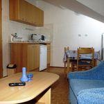 Family  Apartmán s manželskou posteľou s 1 spálňou (s možnosťou prístelky)