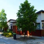 Barack Thermal Resort Apartmanok Tiszakécske