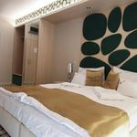 Superior 1-Room Apartment for 2 Persons