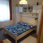 Одноэтажный Однокомнатный 3-местный апартамент с ванной комнатой
