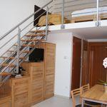 Deluxe Apartman s galérií pro 5 os. s 1 ložnicí
