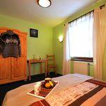Apartament 4-osobowy na piętrze Family z 1 pomieszczeniem sypialnianym (możliwa dostawka)