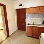 Apartament cu grup sanitar cu vedere spre gradina cu 1 camera pentru 4 pers. (se poate solicita pat suplimentar)