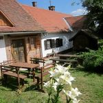 Forest View Whole House 3-Room Apartment for 6 Persons
