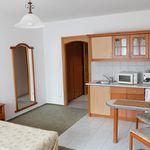 Studio 2 fős apartman 1 hálótérrel (pótágyazható)