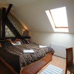 Attic Mansard Twin Room