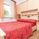 Classic Pogled na grad soba sa francuskim krevetom (za 2 osoba(e))