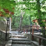 Двухкомнатный 3-местный шале Комфорт с видом на лес (с доп. местом)