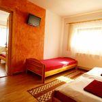 Apartament cu grup sanitar lCD TV cu 2 camere pentru 5 pers. (se poate solicita pat suplimentar)