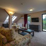 Deluxe 1-Zimmer-Suite für 2 Personen mit Aussicht auf die Berge