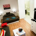 Studio Premium 1-Room Apartment for 4 Persons