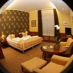 Ground Floor Junior 1-Room Suite for 2 Persons (extra beds available)