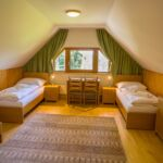 Forest View Mansard 2-Room Apartment for 6 Persons