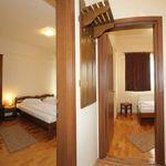 Apartament family cu vedere spre curte cu 2 camere pentru 3 pers.