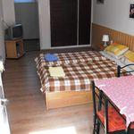Standard Erdgeschosses 2-Zimmer-Apartment für 4 Personen (Zusatzbett möglich)