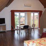 Мансарда Однокомнатный 5-местный апартамент двухуровневый  (с доп. местом)