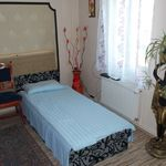 Camera cvadrupla cu vedere spre curte cu bucatarie comuna (se poate solicita pat suplimentar)