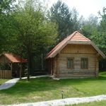 Forest View One Storey Chalet for 4 Persons
