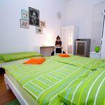 Komfort 1-Zimmer-Apartment für 3 Personen mit Gemeinsamer Küche