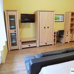 Deluxe 1-Room Apartment for 4 Persons with Kitchen