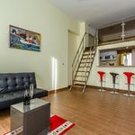 Superior 1-Room Gallery Apartment for 2 Persons