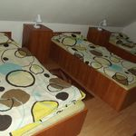 Camera tripla la parter cu vedere spre padure
