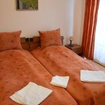 Deluxe 2-Room Apartment for 4 Persons