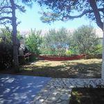 Tengerre néző kerthelyiséggel 5 fős apartman 3 hálótérrel (pótágyazható)