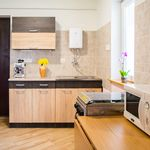 2-Room Family Apartment for 7 Persons with Garden (extra beds available)