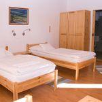 Camera twin la mansarda (se poate solicita pat suplimentar)