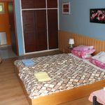 Superior Erdgeschosses 2-Zimmer-Apartment für 4 Personen (Zusatzbett möglich)