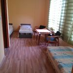 Ground Floor 1-Room Apartment for 3 Persons with Shower (extra bed available)