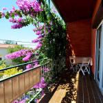 Apartament cu balcon cu vedere spre gradina cu 1 camera pentru 4 pers.