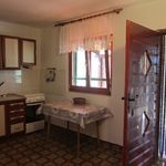 Holiday House Olive Tree Tkon