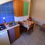Apartament standard la etaj cu 1 camera pentru 2 pers. (se poate solicita pat suplimentar)