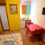 Apartament studio la parter cu 1 camera pentru 2 pers.