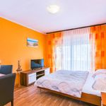 Studio Ground Floor 1-Room Apartment for 2 Persons
