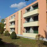 Calycanthus Apartments Zalakaros