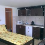 1-Room Apartment for 3 Persons
